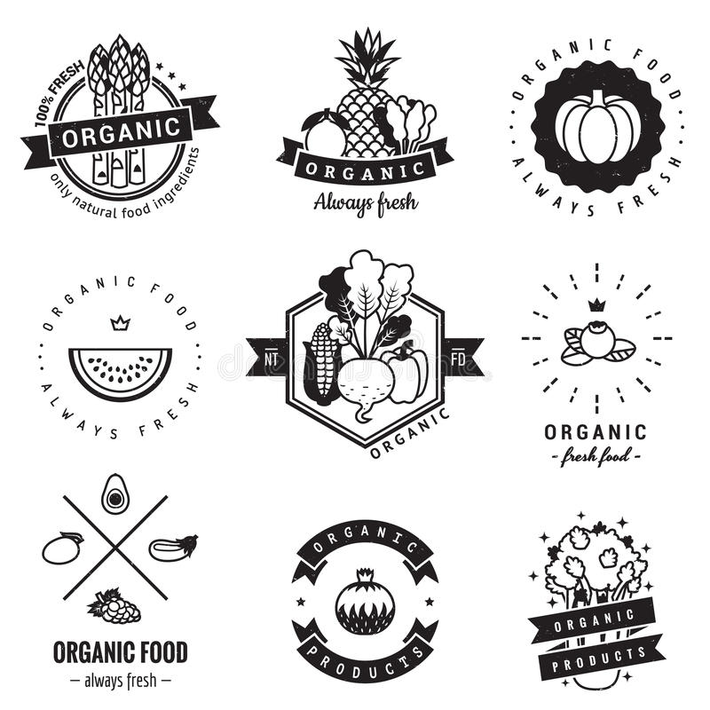 Żywność organiczna loga rocznika wektoru set Modniś i retro styl