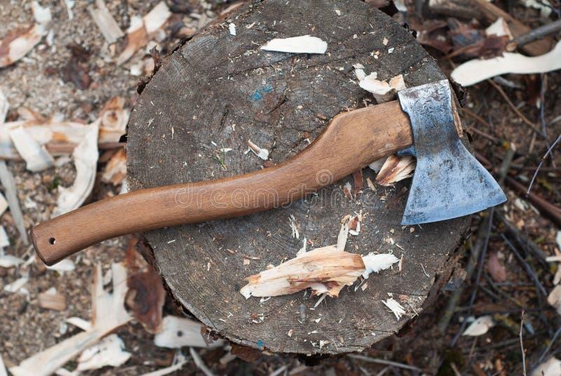 Yxan som ligger på en journal, trächiper, spridde omkring, snickarens yxa för att klippa trä royaltyfri fotografi