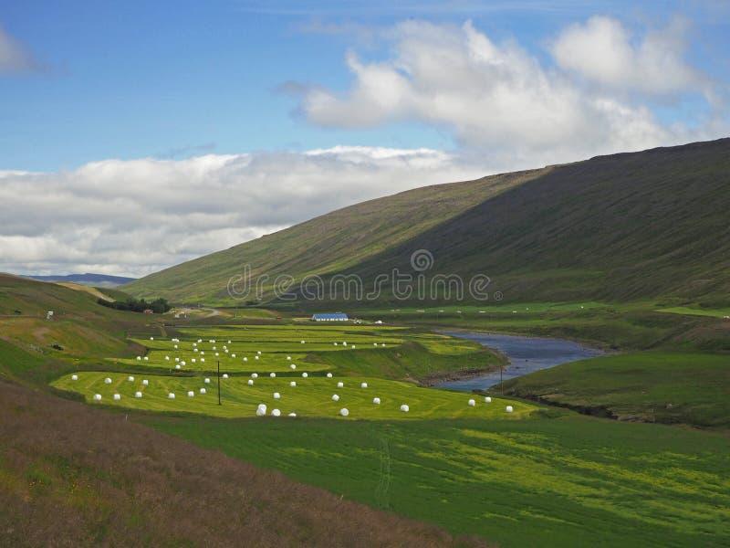 Żyzna rzeczna dolina z luksusową trawą, słomianą belą i gospodarstwem rolnym, zdjęcia stock