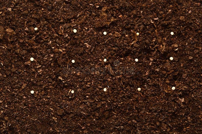 Żyznego ogród ziemi tekstury tła odgórny widok fotografia stock