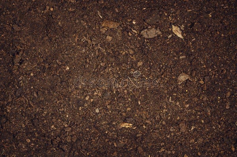 Żyznego ogród ziemi tekstury tła odgórny widok zdjęcie royalty free