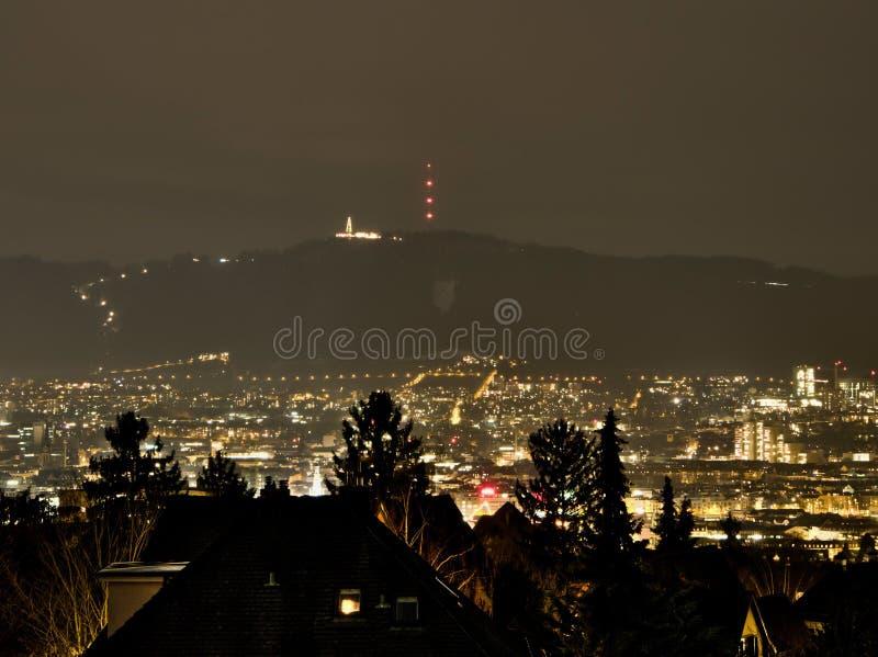 ZÃ-¼rich vid natt med Uetliberg i bakgrunden royaltyfria foton