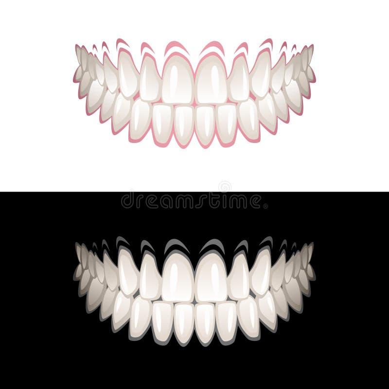 Download Zähne vektor abbildung. Illustration von baumuster, gummi - 26365758