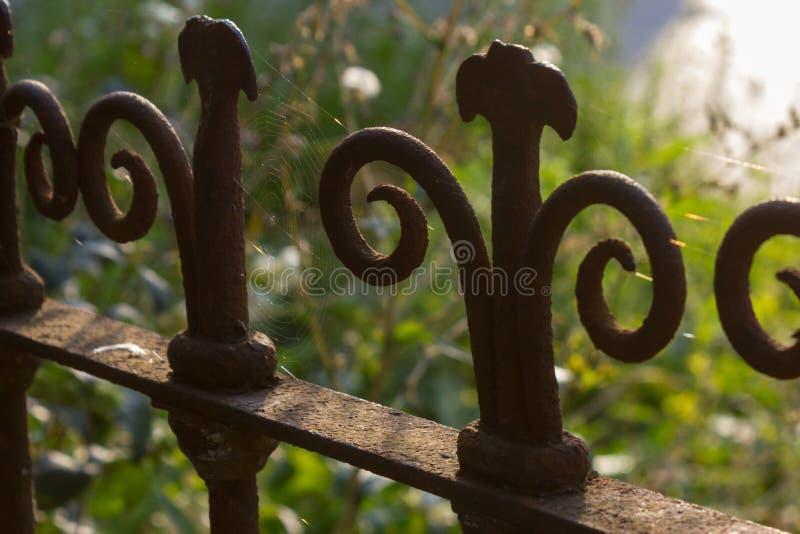 Zäune Weinlesegarten im im Freien parken am sonnigen Tag des Sommers stockfotos