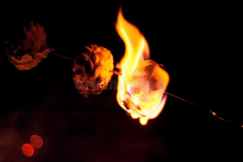Zéfiros dos marshmallows da repreensão imagem de stock royalty free