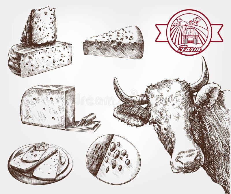 Züchtende Kühe stock abbildung
