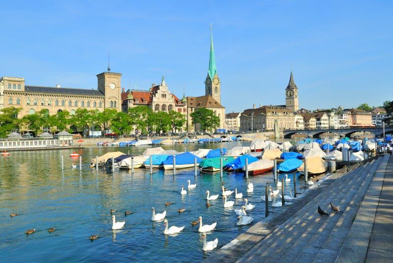 Zürich im Sommer lizenzfreie stockfotos