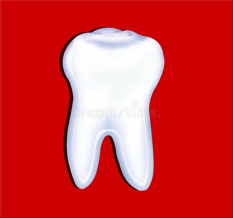 Ząb zdjęcia stock