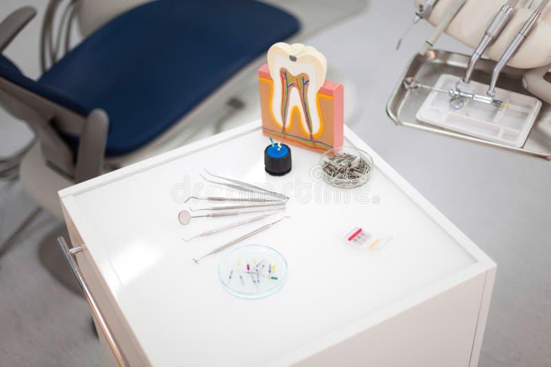 Ząb anatomia, jaskrawy kolorowy brzmienia pojęcie obraz royalty free