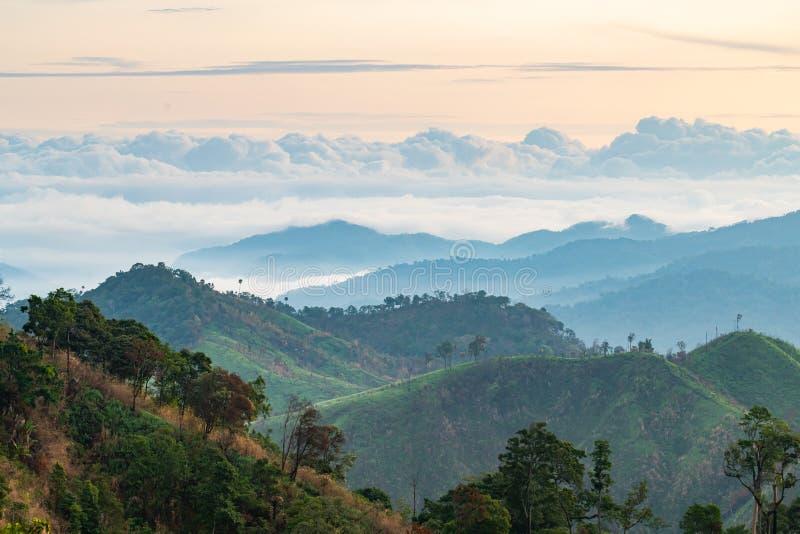 Złożoność góry krajobrazowa i drzewna różnorodność las z pięknymi niskimi chmurami na wierzchołku obrazy stock