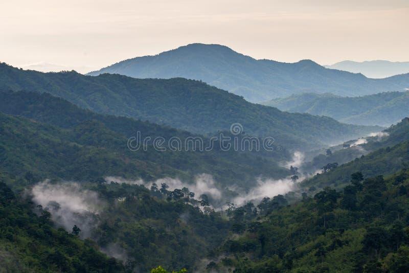 Złożoność góry krajobrazowa i drzewna różnorodność las z ranek mgłą w dolinie fotografia stock