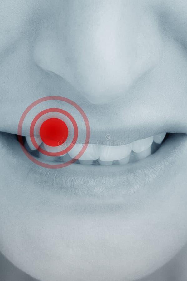 Złożony wizerunek zakończenie up żeński usta warczeć zdjęcie royalty free