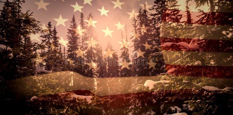 Złożony wizerunek zlani stany America flaga ilustracji