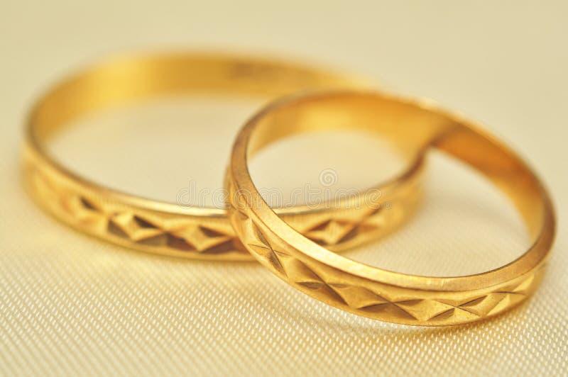 złociści makro- pierścionki zdjęcia royalty free