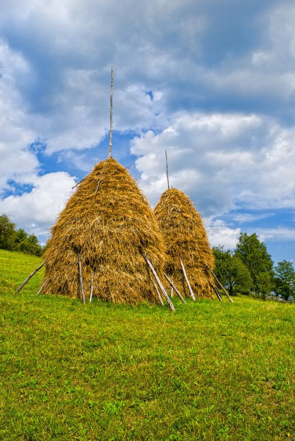 Złoci haystacks na wzgórzu obrazy royalty free