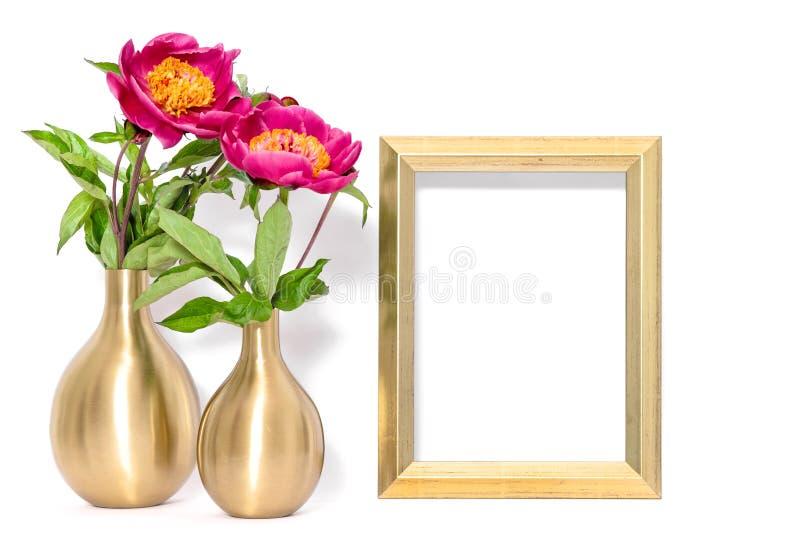 Złoci obrazek ramy menchii peoni kwiaty zdjęcia stock