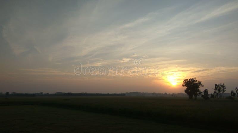 złoci promienie słońce zaczynać jaskrawy słoneczny dzień obraz royalty free
