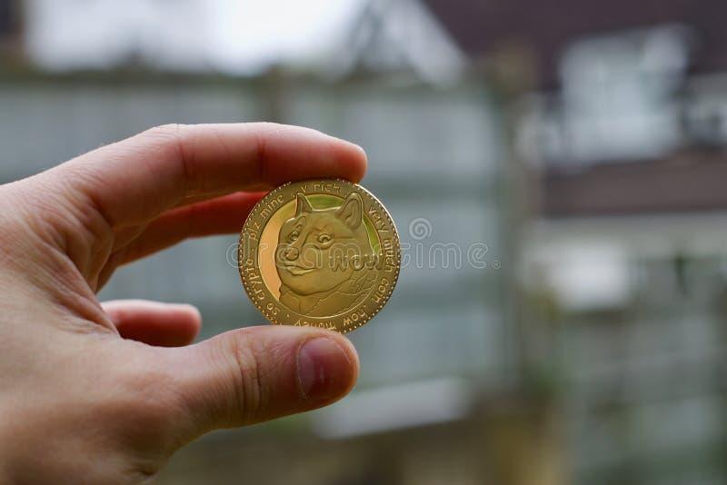 Złocista dogecoin moneta zdjęcie stock