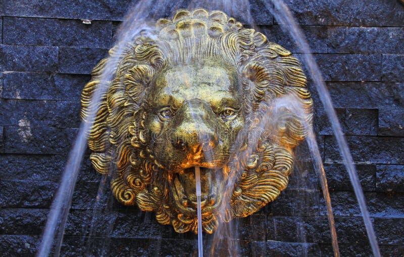 Złocista lew fontanna obraz royalty free