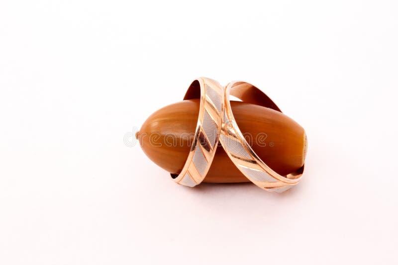 Złocista obrączka ślubna na brown acorn dębie fotografia royalty free