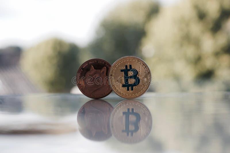 Złocisty bitcoin i mosiądza dogecoin obrazy stock