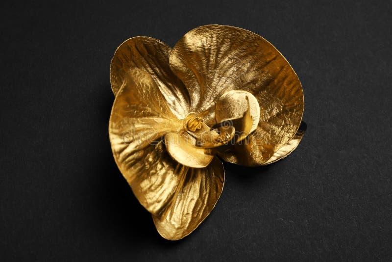 Złocisty dekoracyjny storczykowy kwiat obraz royalty free
