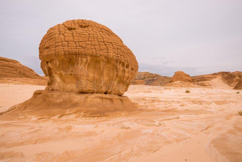 Złocisty suchy pustynia krajobraz Synaj, Egipt zdjęcie royalty free