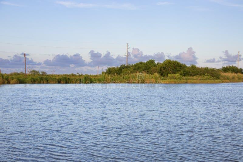 Złota łąka, Luizjana fotografia stock