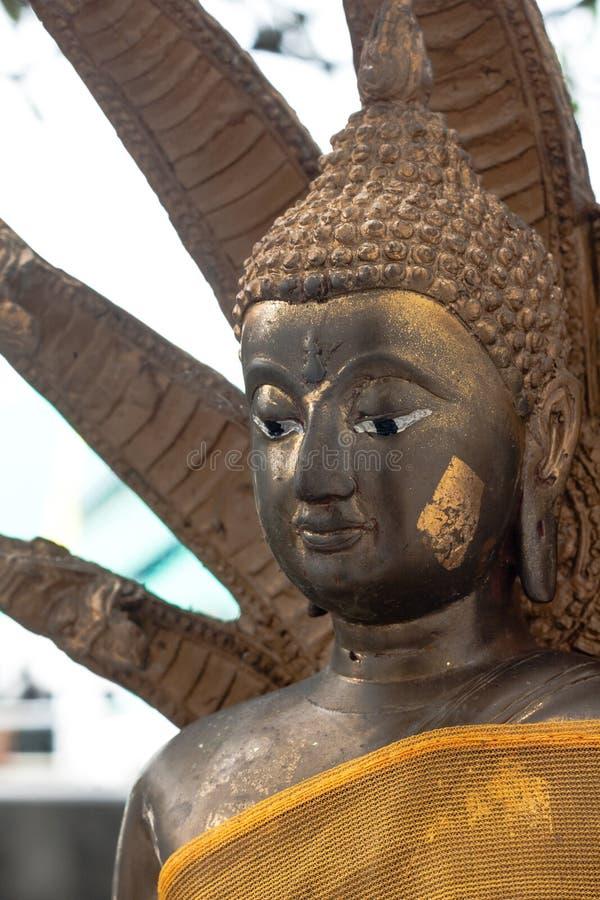 Złota Buddha statua z Naka pokrywą obrazy stock