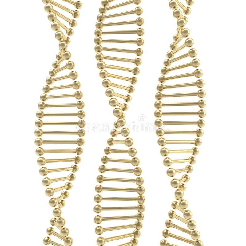 Złota DNA posążka postać odizolowywająca na bielu royalty ilustracja