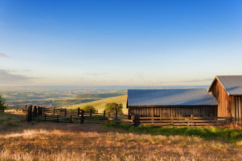 Złota godzina przy Dallas Halnym rancho przy Kolumbia wzgórzy stanem obrazy stock