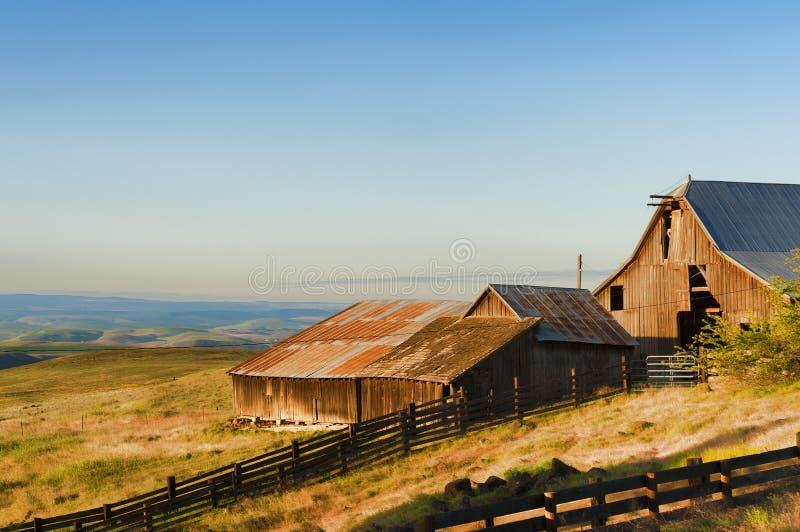 Złota godzina przy Dallas Halnym rancho przy Kolumbia wzgórzy stanem obraz stock