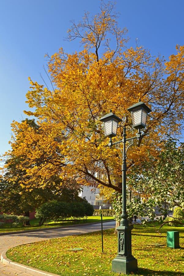 Złota jesień w Aleksander ogródach Rocznika lampion i koloru żółtego ulistnienie moscow obraz stock