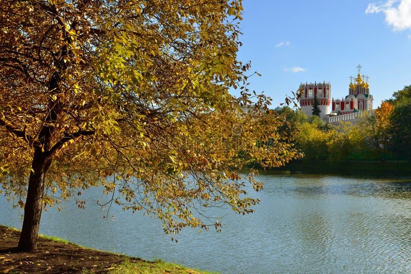 Złota jesień w parku Novodevichy klasztor moscow Rosji zdjęcia royalty free