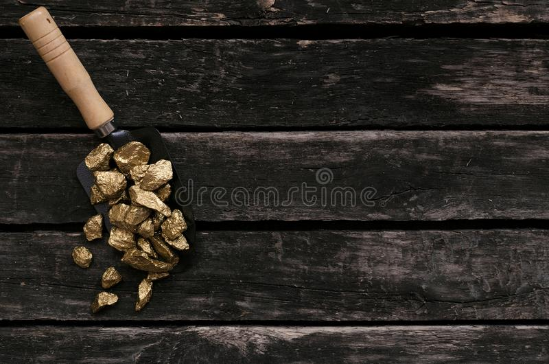 Złota kruszec w łopacie Skarbu myśliwy adventurer obraz stock
