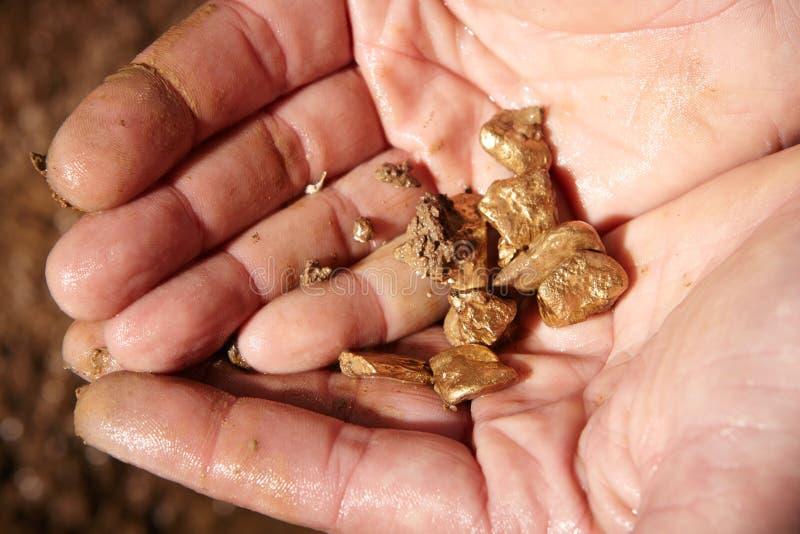 Złote bryłki w rękach zdjęcia royalty free