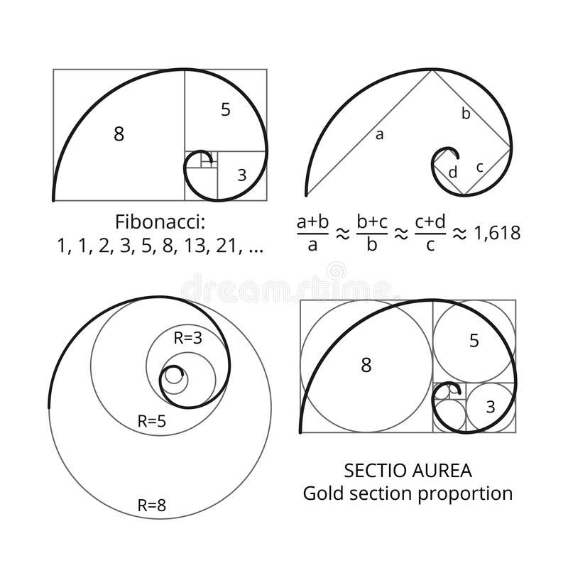 Złote Fibonacci współczynnika spirale Złocisty sekci proporci wektoru unaocznienie royalty ilustracja