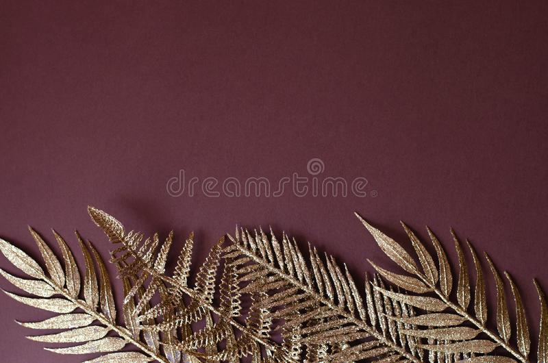 Złote gałąź tropikalne rośliny na brązu tle fotografia royalty free