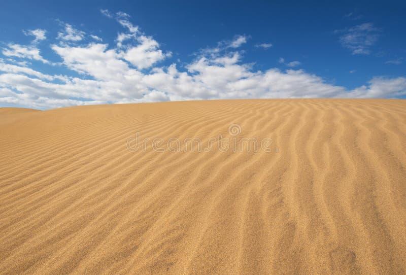 Złote piasek diuny w Maspalomas, Gran Canaria, wyspy kanaryjska, Hiszpania obrazy stock