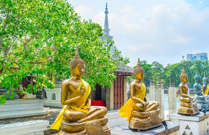 Złote statuy Seema Malaka świątynia Kolombo fotografia stock