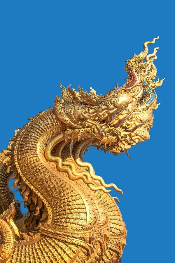 Złote wąż głowy fotografia royalty free