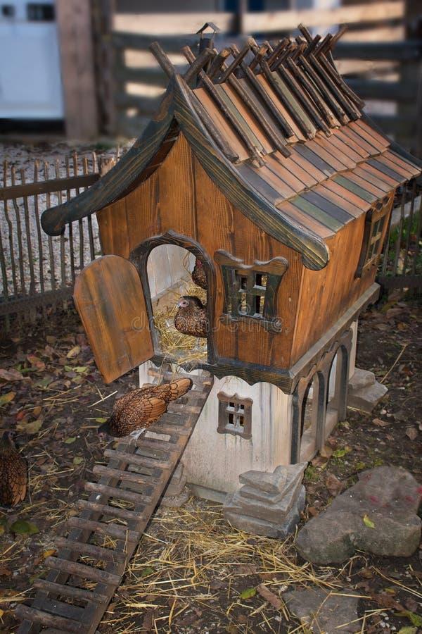 Złote Zasznurowywać Wyandotte karmazynki chodzi z kurczaka domu zdjęcie royalty free