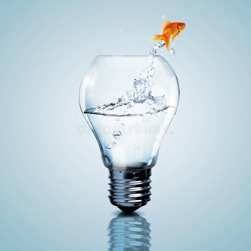 Złoto ryba wśrodku elektrycznej żarówki obraz stock