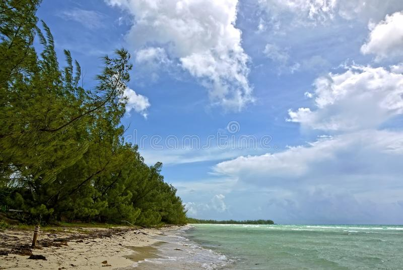 Złoto skały plaża, Uroczysty Bahama Bahamas zdjęcia stock