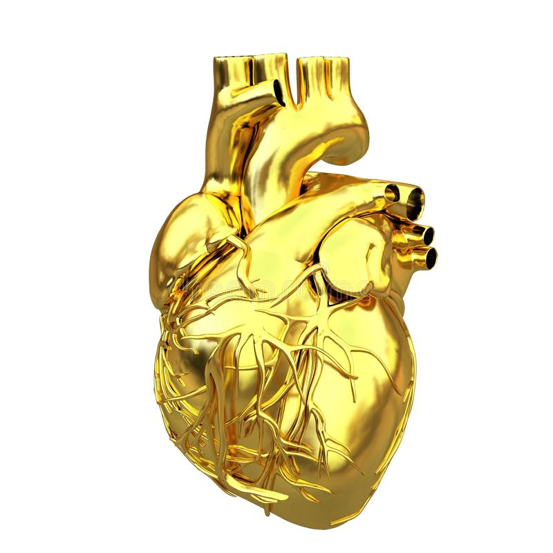 Złoty anatomiczny serce ilustracji
