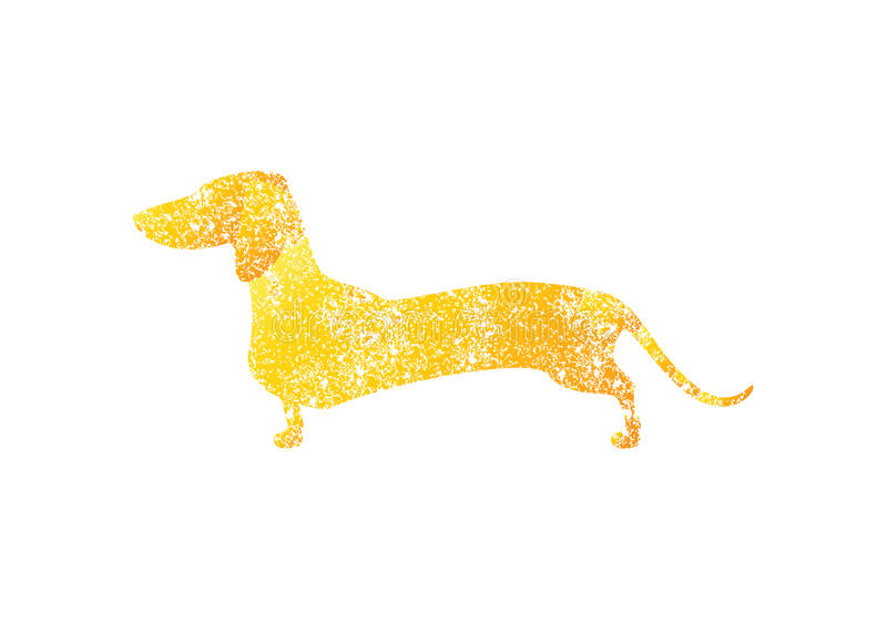 Złoty barwiony podławy jamnik ilustracji