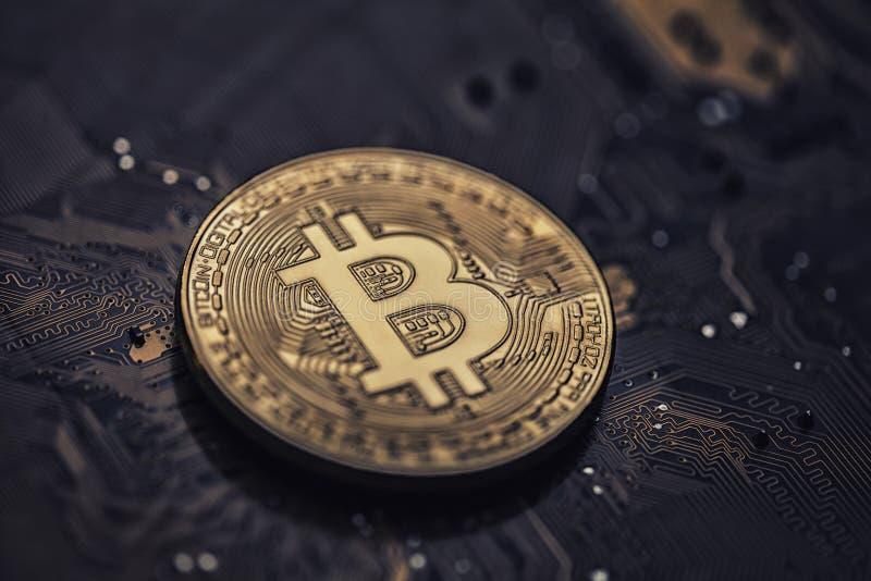 Złoty bitcoin żeton na komputerowym interfejsie zdjęcie stock