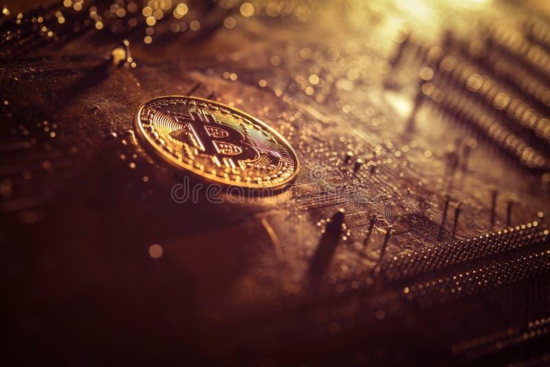 Złoty bitcoin żeton na komputerowym interfejsie obrazy royalty free