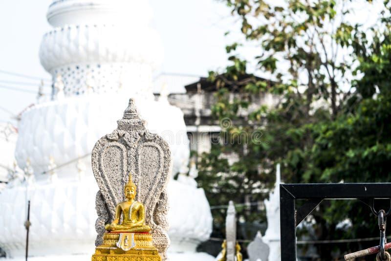Złoty Buddha zakłada przy podwórzem Chedi w Tajlandia zdjęcia stock