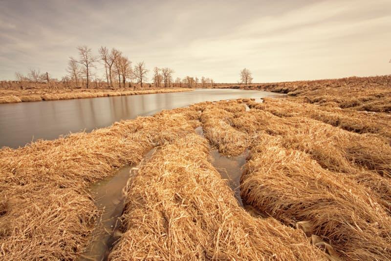 Złoty Długi ujawnienie rzeki krajobraz zdjęcie stock